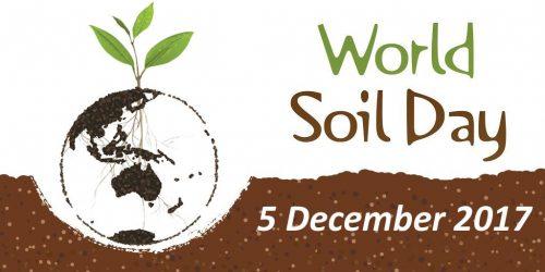 Міжнародний день ґрунтів