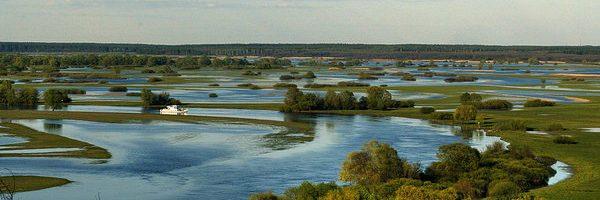 2 лютого – Всесвітній день  водно-болотних угідь