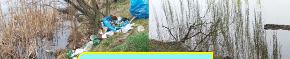 Екологічна акція «Чисті береги»